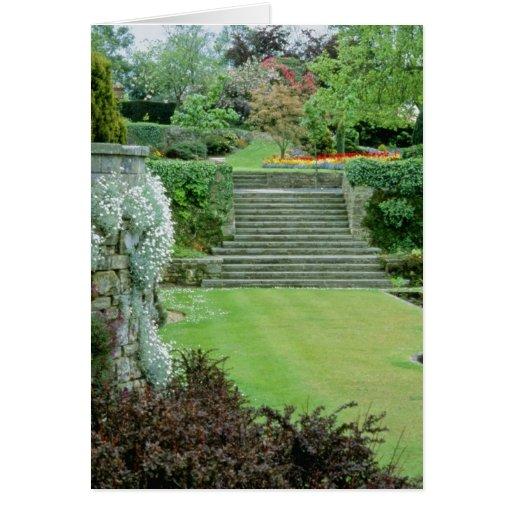 Jardín formal rojo - Arabis, Aubretia, Wallflowers Tarjeta De Felicitación