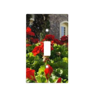 Jardín inglés placas para interruptor
