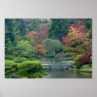 Jardín japonés en el parque de Washington Póster