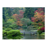 Jardín japonés en el parque de Washington Tarjetas Postales