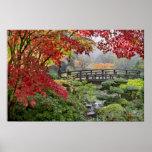 Jardín japonés en un poster de niebla de la mañana