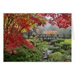 Jardín japonés en una tarjeta de niebla de la maña