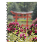 Jardín japonés libretas