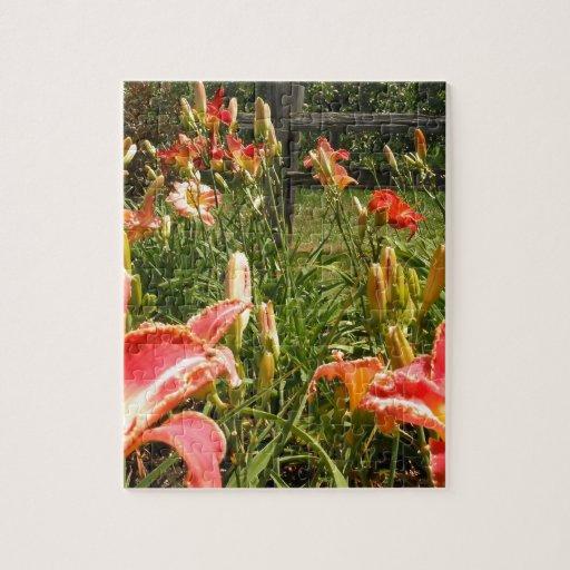 Jardín Lillies Rompecabeza Con Fotos