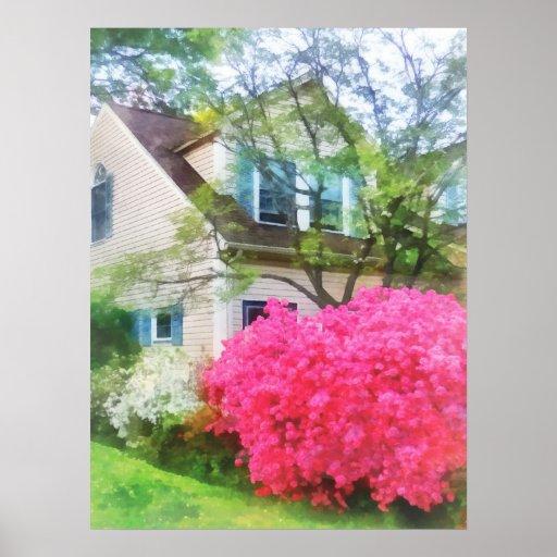 Jardín magenta de la azalea póster
