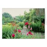 Jardín mezclado rojo de la cabaña - Peony, pelitre Tarjeta De Felicitación