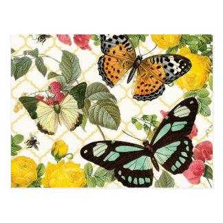 jardín moderno de la mariposa del vintage postales