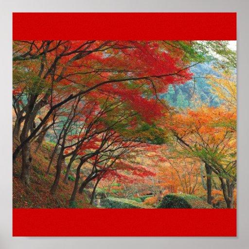 Jardin Multicolor Posters
