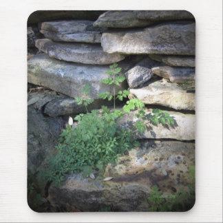 Jardín ocultado mouse pad