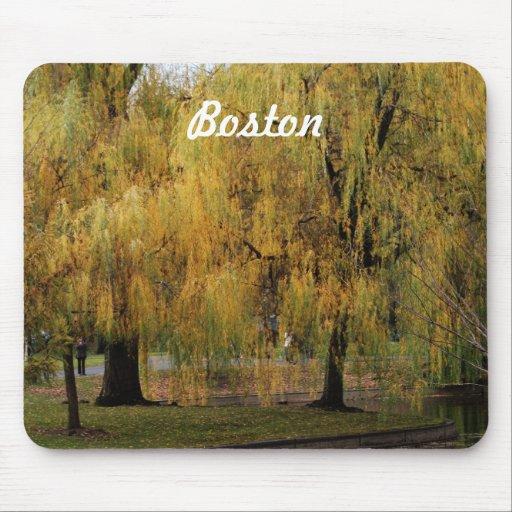 Jardín público de Boston Alfombrillas De Raton