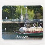 Jardín público de Boston Alfombrillas De Ratones