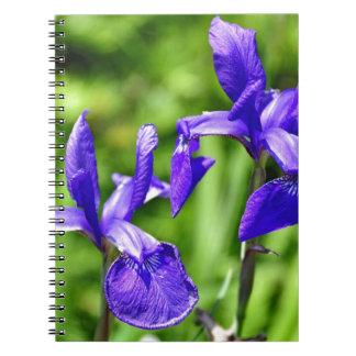 Jardín púrpura de Shakespeares de los fuegos artif Libreta Espiral