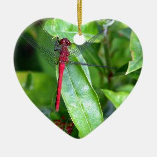 jardín rojo de la libélula ornamentos para reyes magos
