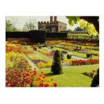 Jardín rojo del palacio del Hampton Court, flores  Tarjeta Postal