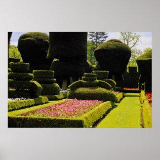 Jardín rojo del Topiary, Levens Pasillo, Cumbria,  Poster