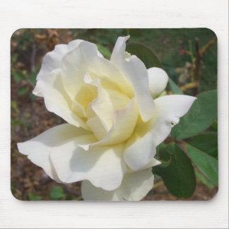 Jardín romántico CricketDiane del flor del rosa Mouse Pad