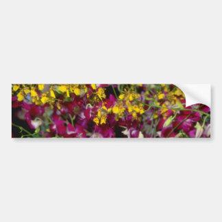 Jardín rosado de orquídeas - Dendrobium y Oncidium Etiqueta De Parachoque