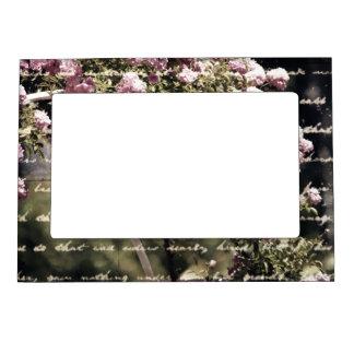 Jardín rosado dulce de rosas marcos magnéticos de fotos