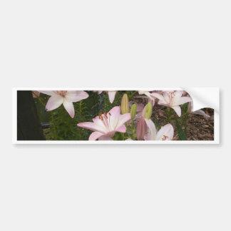 Jardín rosado Lillies Etiqueta De Parachoque