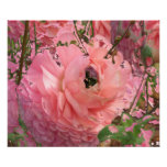 Jardín rosado poster
