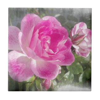 Jardín rosado subió teja cerámica