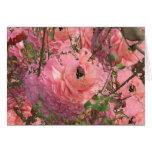 Jardín rosado tarjeta de felicitación