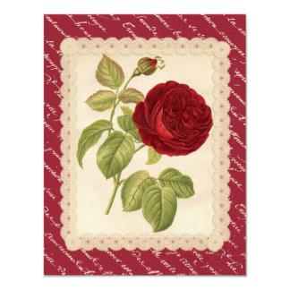Jardin Rose Charles Lefebvre Card