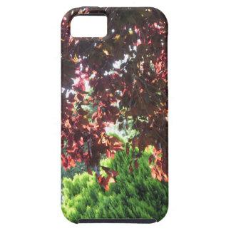 Jardín salvaje New Jersey NVN686 de la selva única iPhone 5 Case-Mate Cárcasa
