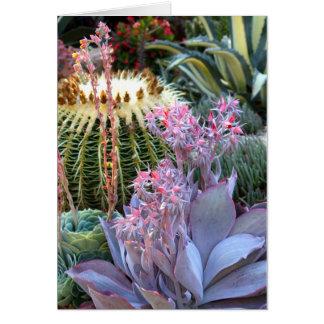 Jardín suculento colorido tarjeta pequeña