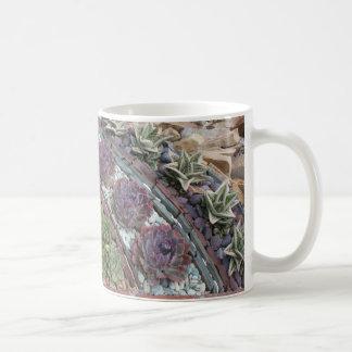 Jardín suculento geométrico tazas de café