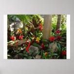 Jardín tropical poster