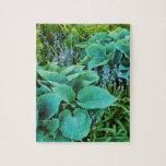 Jardín verde enorme de la planta del hosta y del h puzzles