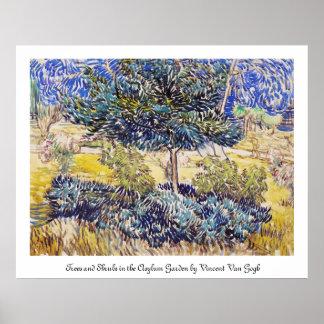 Jardín Vincent van Gogh del asilo de los arbustos  Póster
