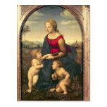 Jardinera de la belleza del La, 1507 Postal