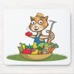 Jardinero del gato tapete de raton
