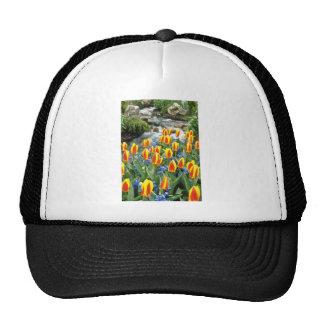 jardines amarillos de Keukenhof, flores de Holanda Gorro