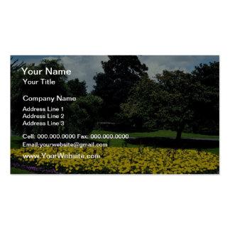 jardines amarillos del festival, camino de Ashby,  Plantilla De Tarjeta De Visita
