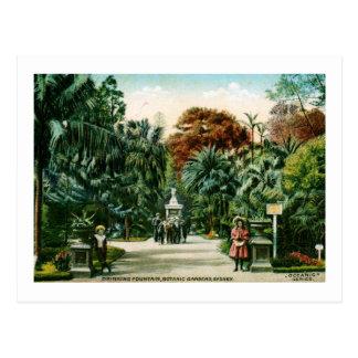 Jardines botánicos, vintage de Sydney, Australia Tarjetas Postales
