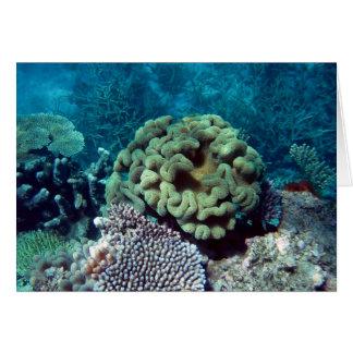Jardines coralinos tarjeta de felicitación
