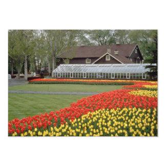 Jardines de Edward, tulipanes y flores rojos del Anuncios Personalizados