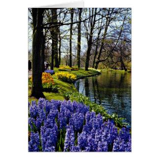 Jardines de Keukenhof, Lisse, flores holandesas Tarjeta De Felicitación