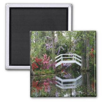Jardines de la magnolia, S.C. Imán Cuadrado