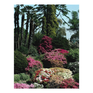 "Jardines de Leonardslee, Sussex del oeste, Inglate Folleto 8.5"" X 11"""