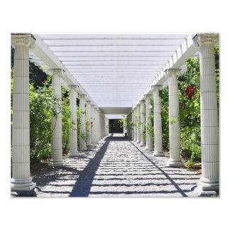 Jardines de Yaddo Fotografias