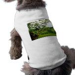 Jardines del iris ropa de perros