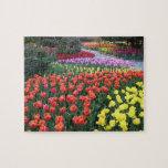 Jardines del tulipán puzzles con fotos