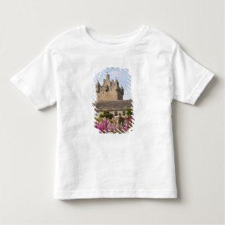 Jardines hermosos y castillo famoso en Escocia 2 Playera