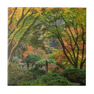 Jardines japoneses en otoño en Portland, Oregon 4 Azulejo Cuadrado Pequeño
