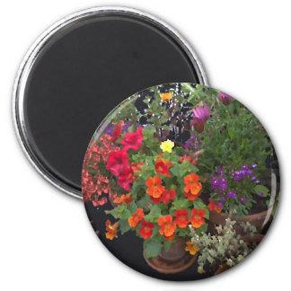 Jardines miniatura imán redondo 5 cm