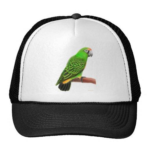 Jardines Parrot Hat